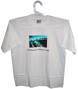 толстовки футболки шелкография